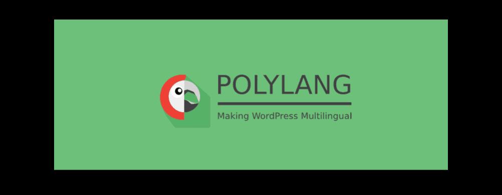 Polylang website vertalen